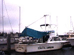 photo of MS Coastal