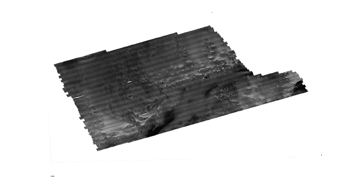 Sidescan sonar data