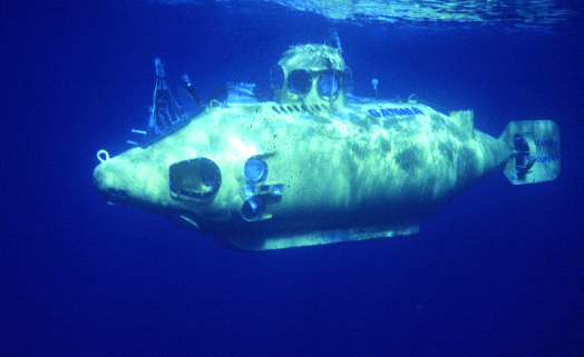 photo of Nekton Gamma