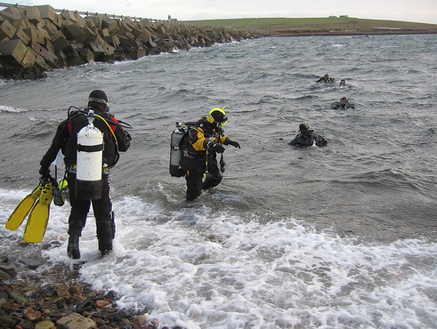 photo of Shore Dive